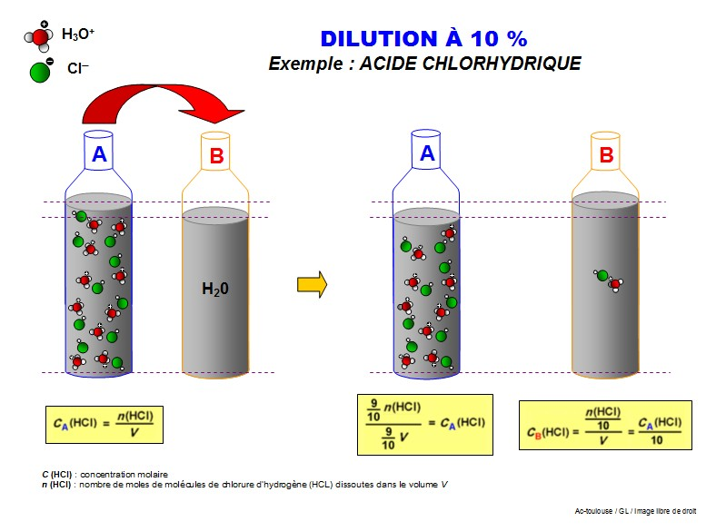 how to prepare a 1 10 dilution